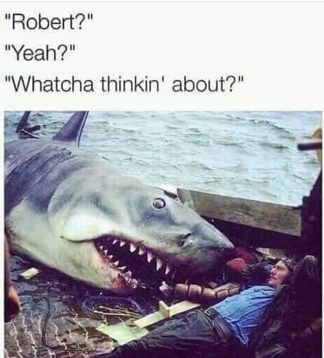 "Caption that reads, ""'Robert?' 'Yeah?' 'Watcha thinkin' about?'"" above a pic of a shark lying next to a guy on a fishing boat"