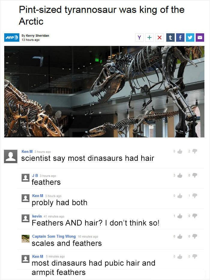 Ken M trolling - Text - Pint-sized tyrannosaur was king of the Arctic By Kerry Sheridan 13 hours ago Y Xt f AFP Ken M 3hours ago scientist say most dinasaurs had hair J B 3 hours ago feathers Ken M 3 hours ago probly had both kevin 41 minutes ago Feathers AND hair? I don't think so! Captain Som Ting Wong 16 minutes apo scales and feathers Ken M 5 minutes ago most dinasaurs had pubic hair and armpit feathers