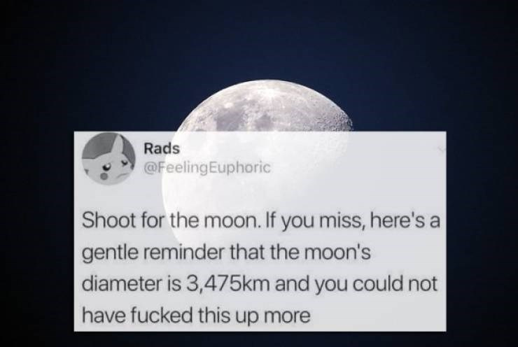 twitter post Shoot for the moon. If you miss, here's a gentle reminder that the moon's diameter is 3,475km and you could not have fucked this up more