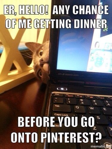 Laptop - ER, HELLO! ANY CHANCE OF ME GETTING DINNER Tab Caps Lock BEFORE YOU GO ONTO PINTEREST? mematic neE