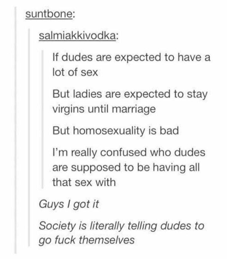 Text - suntbone: salmiakkivodka: If dudes are expected to have a lot of sex But ladies are expected to stay virgins until marriage But homosexuality is bad I'm really confused who dudes are supposed to be having all that sex with Guys I got it Society is literally telling dudes to go fuck themselves