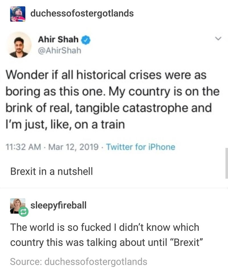 """Text - duchessofostergotlands Ahir Shah @AhirShah Wonder if all historical crises were as boring as this one. My country is on the brink of real, tangible catastrophe and I'm just, like, on a train 11:32 AM Mar 12, 2019 Twitter for iPhone Brexit in a nutshell sleepyfireball The world is so fucked I didn't know which country this was talking about until """"Brexit"""" Source: duchessofostergotlands"""