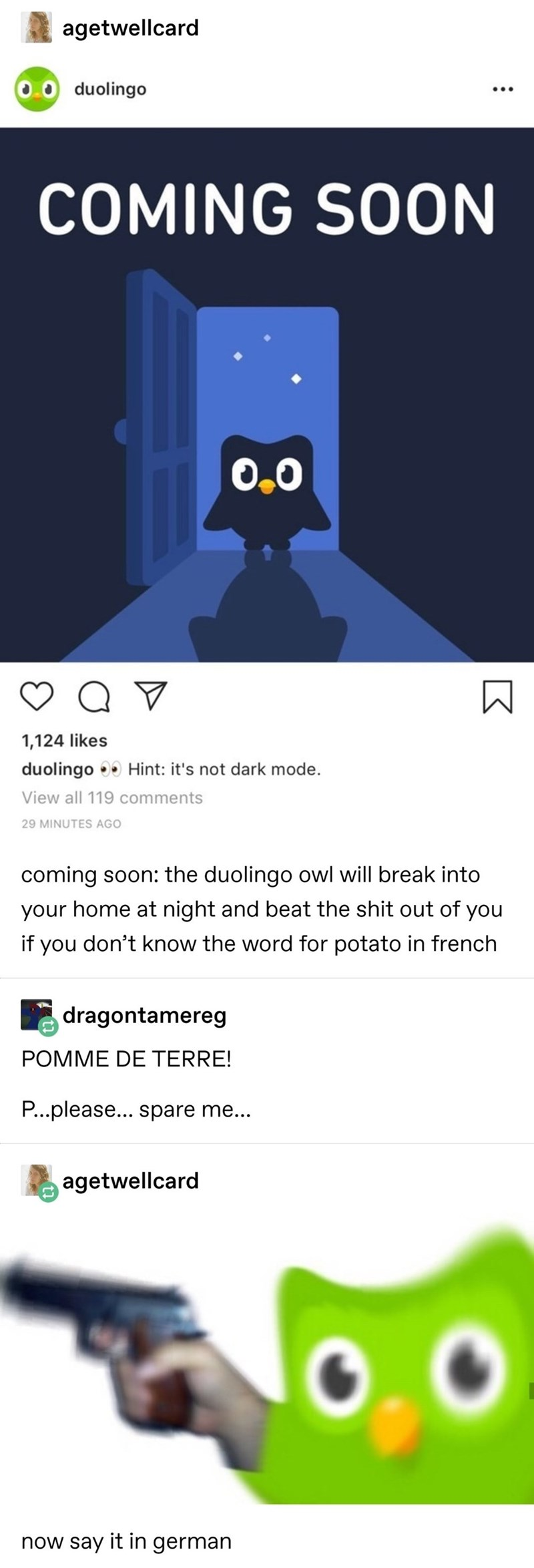 Text - agetwellcard duolingo COMING SOON O.0 Q V 1,124 likes duolingo Hint: it's not dark mode. View all 119 comments 29 MINUTES AGO coming soon: the duolingo owl will break into your home at night and beat the shit out of you if you don't know the word for potato in french dragontamereg POMME DE TERRE! P...please... spare me... agetwellcard now say it in german