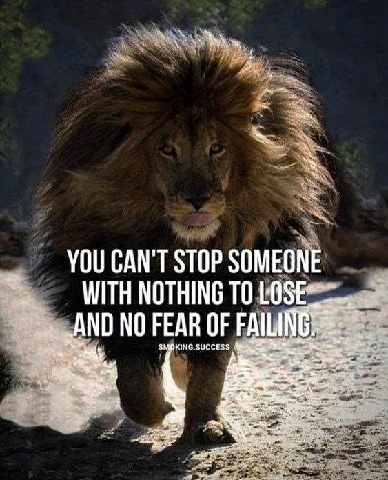 motivational lions - - Lion - YOU CAN'T STOP SOMEONE WITH NOTHING TO LOSE AND NO FEAR OF FAILING SMOKING.SUCCESS
