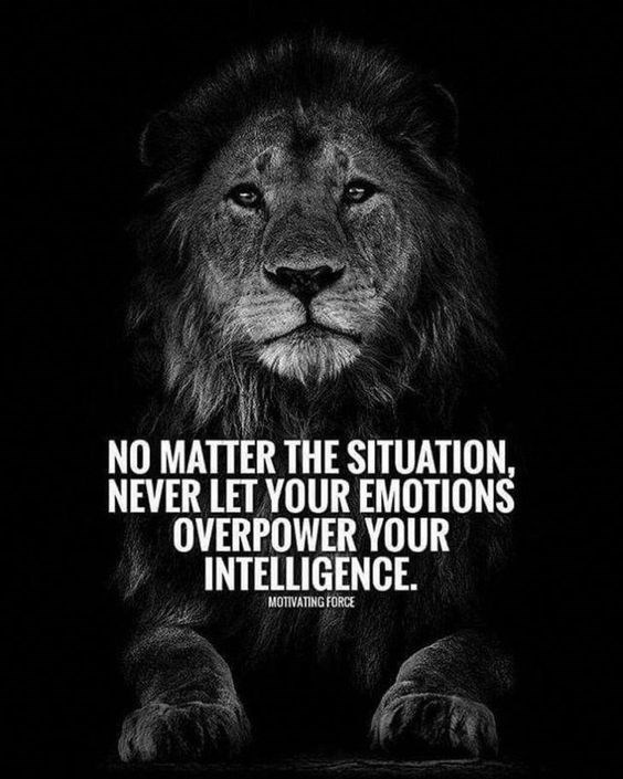 motivational lions - - Lion - NO MATTER THE SITUATION, NEVER LET YOUR EMOTIONS OVERPOWER YOUR INTELLIGENCE. MOTIVATING FORCE