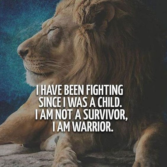 motivational lions - - Lion - THAVE BEEN FIGHTING SINCE I WAS A CHILD. I AM NOT A SURVIVOR, IAM WARRIOR.