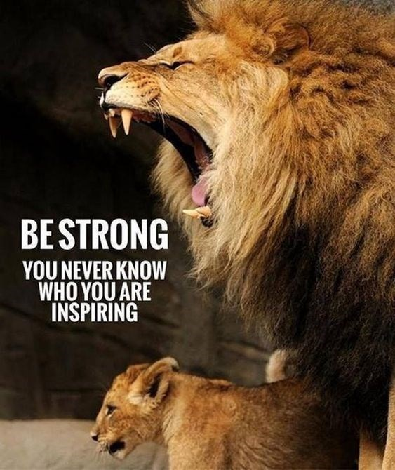 motivational lions - - Vertebrate - BESTRONG YOU NEVER KNOW WHO YOU ARE INSPIRING