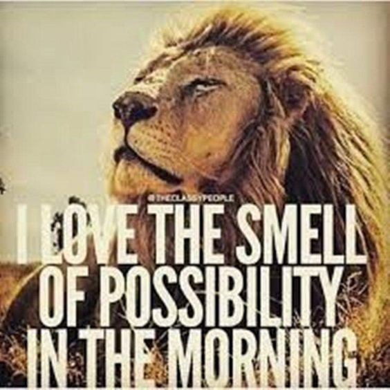motivational lions - - Lion - THECLASSIEOPLE E VETHE SMELL OF POSSIBILITY IN THE MORNING
