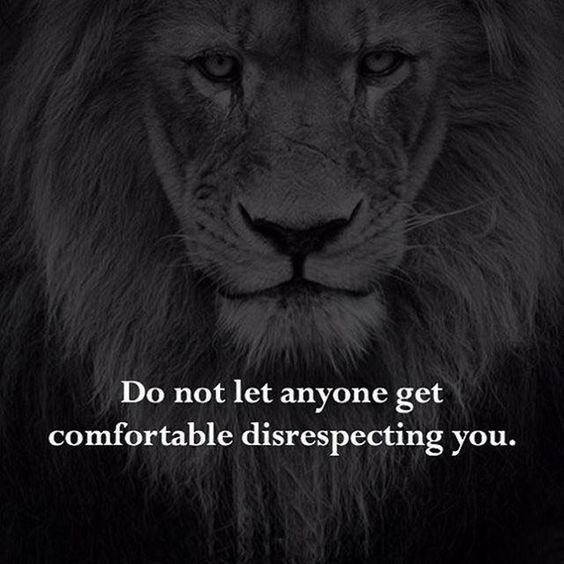 motivational lions - - Wildlife - Do not let anyone get comfortable disrespecting you.