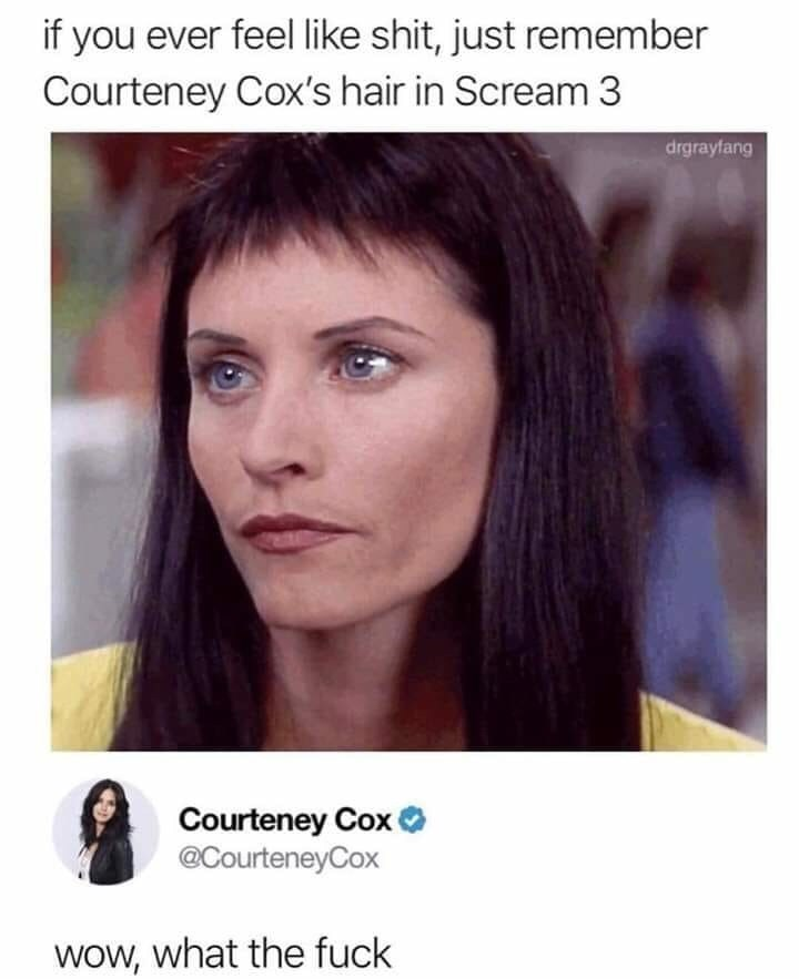 meme - Face - if you ever feel like shit, just remember Courteney Cox's hair in Scream 3 drgrayfang Courteney Cox @CourteneyCox Wow, what the fuck