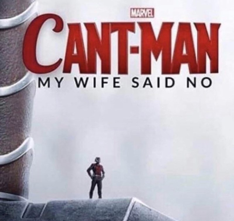meme - Fictional character - MARVEL CANT-MAN MY WIFE S AID NO