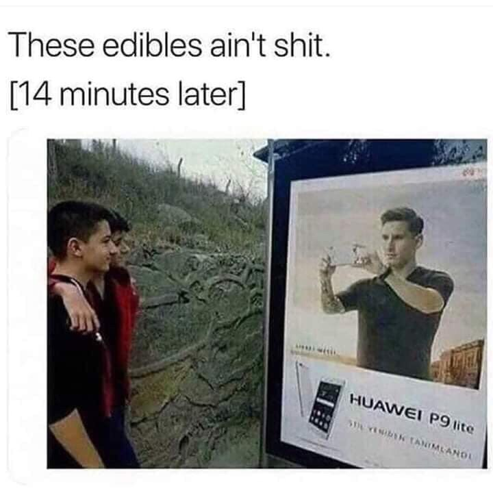 meme - Text - These edibles ain't shit. [14 minutes later] HUAWEI P9 lite SY TANIMLAND