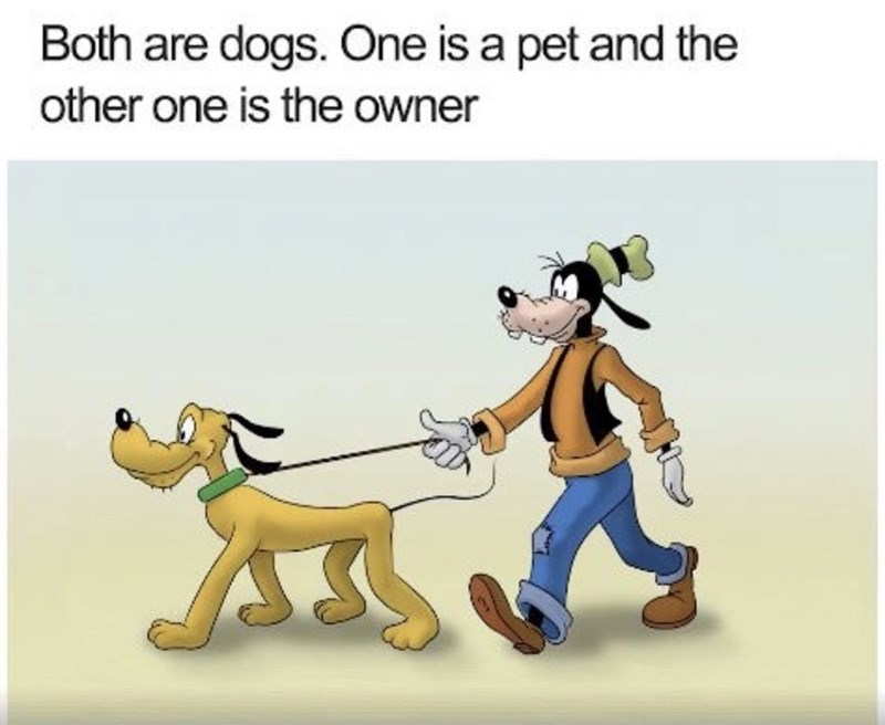 """Caption that reads, """"Both are dogs. One is a pet and the other is the owner"""" above a pic of Goofy walking Pluto"""