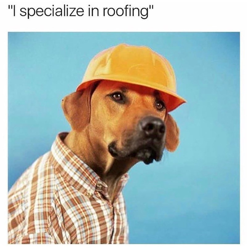 "Dog - ""I specialize in roofing"""