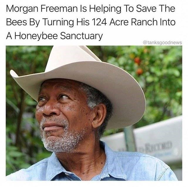 Hat - Morgan Freeman Is Helping To Save The Bees By Turning His 124 Acre Ranch Into A Honeybee Sanctuary @tanksgoodnews RC