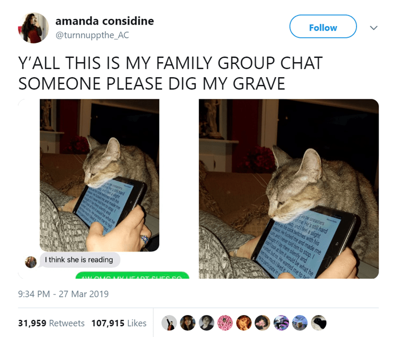 Cat - Follow СHAT amanda considine @turnnuppthe_AC Y'ALL THIS IS MY FAMILY GROUP CHAT SOMEONE PLEASE DIG MY GRAVE ie ds ne ureatnes of me He's still hard , and Ifel a slight 8te as his cock twitches with his release He fucked me and made me CuUT and I never told him to stop.I thoaught of ay there silently and ddh look at him it would be what he wented but no He wanted me to t ehw much ked it e ees ofne He's stil hard and el a slight te as ht ook witches wth his He uded me and made me un nd neve