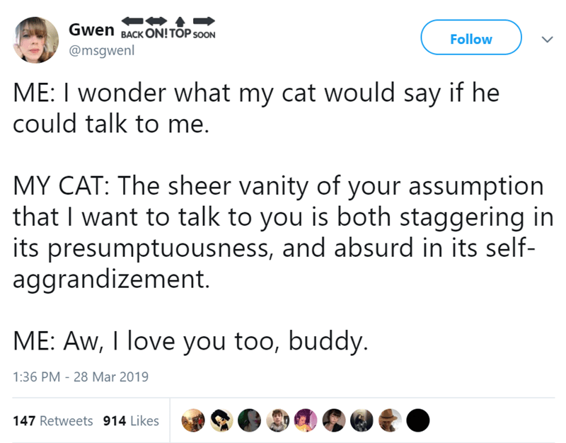 Text - Gwen BACK ON! TÕP sooN Follow @msgwenl ME: I wonder what my cat would say if he could talk to me. MY CAT: The sheer vanity of your assumption that I want to talk to you is both staggering in its presumptuousness, and absurd in its self- aggrandizement. ME: Aw, I love you too, buddy. 1:36 PM 28 Mar 2019 147 Retweets 914 Likes