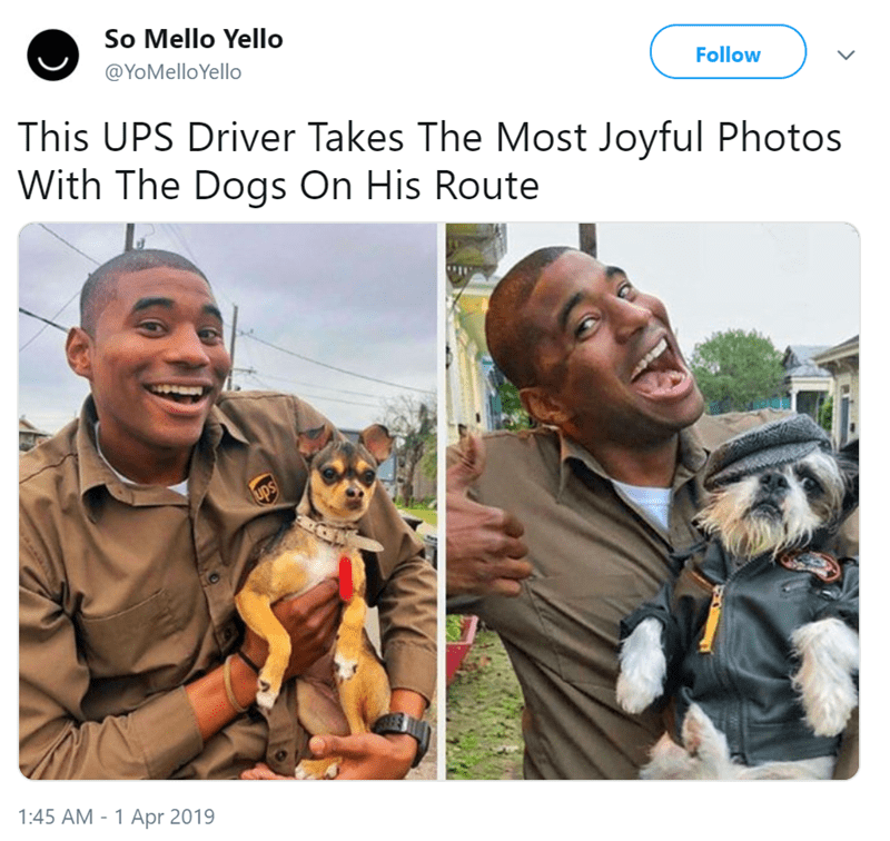 Canidae - So Mello Yello @YoMelloYello Follow This UPS Driver Takes The Most Joyful Photos With The Dogs On His Route ups 1:45 AM - 1 Apr 2019