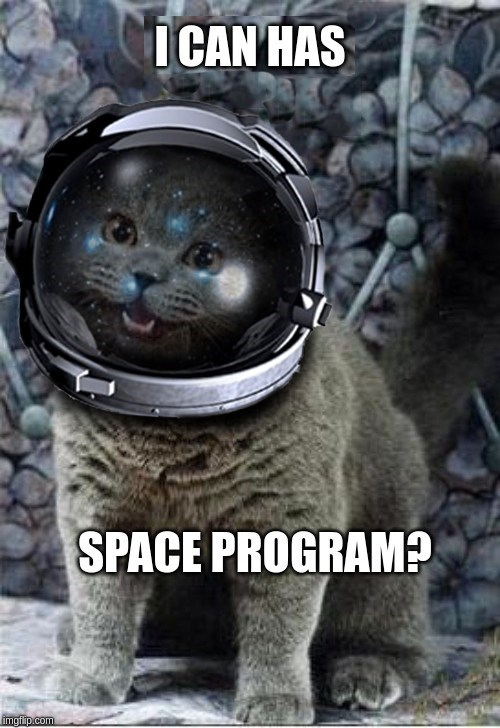 space cat I can has space program