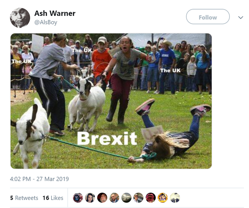 Canidae - Ash Warner Follow @AlsBoy The 6x The UK The UK Brexit 4:02 PM 27 Mar 2019 5 Retweets 16 Likes