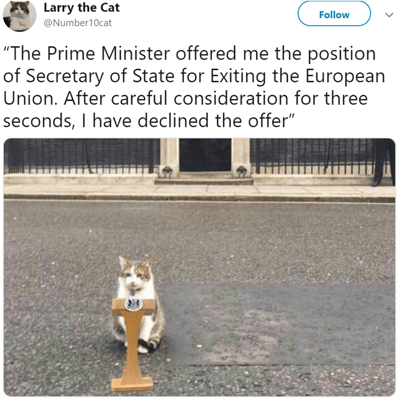 """Canidae - Larry the Cat Follow @Number10cat """"The Prime Minister offered me the position of Secretary of State for Exiting the European Union. After careful consideration for three seconds, I have declined the offer"""""""