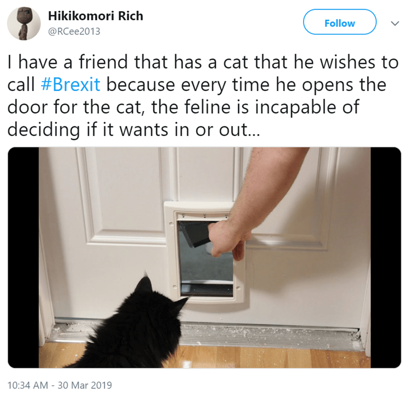 Cat - Hikikomori Rich Follow @RCee2013 I have a friend that has a cat that he wishes to call #Brexit because every time he opens the door for the cat, the feline is incapable of deciding if it wants in or out... 10:34 AM - 30 Mar 2019