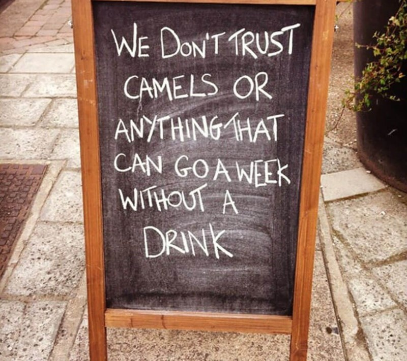 restaurant sign - Text - WE DONT TRUST CAMELS OR ANYTHING HAT CAN GOAWEEK WITHOUT A DRINK