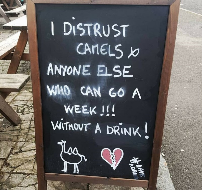restaurant sign - Text - I DISTRUST CArNELS ANYONE ELSE WHO CAN GO A WEEK !! WITHOUT A DRINK WAME AOR