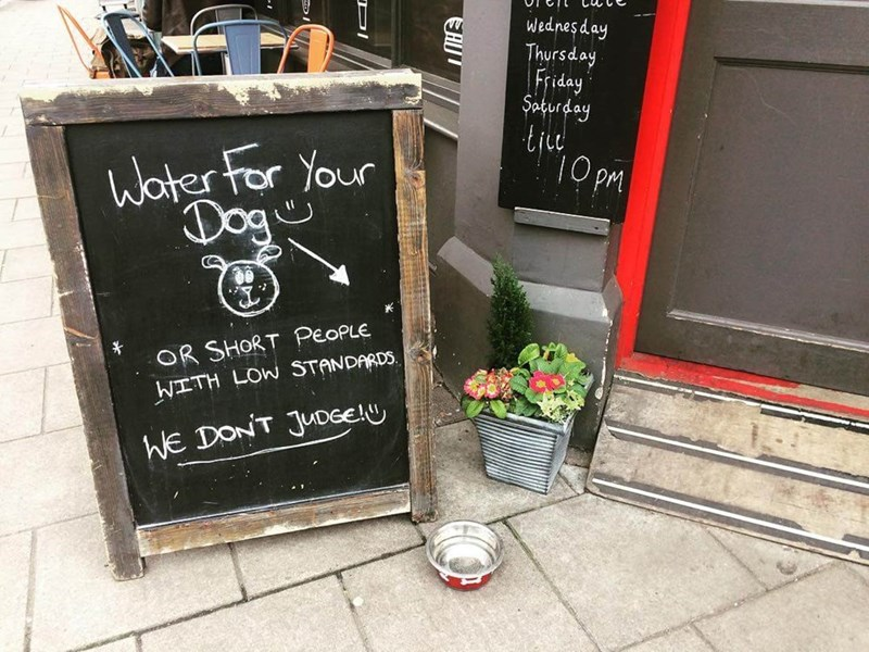 restaurant sign - Blackboard - Wednes day Thursday Friday Saturday Woter for Your Dog 10 pm OR SHORT PEOPLE WITH LOW STANDARDS WE DONT JUDGe EHIT PI