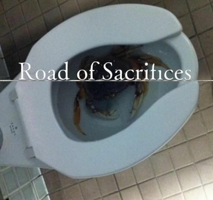 Toilet - Road of Sacritices