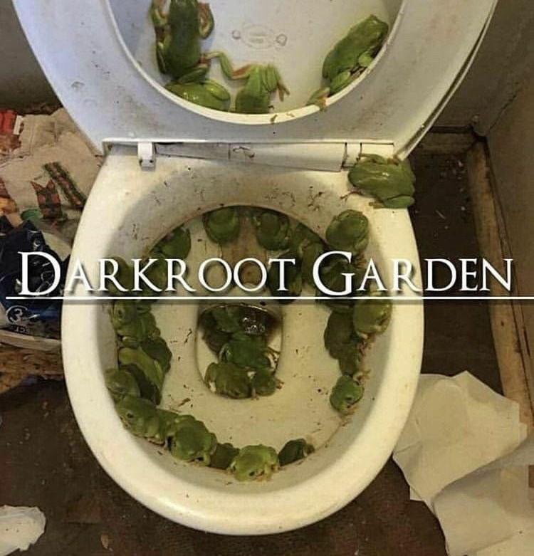 Toilet - DARKROOT GARDEN (3 CCT