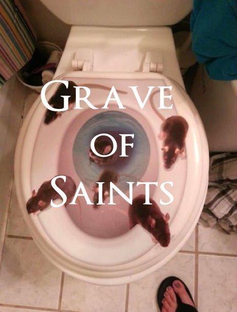 Toilet seat - GRAVE OF SAINTS