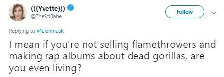 Text - (CYvette)) @TheSciBabe Follow Replying to @elonmusk I mean if you're not selling flamethrowers and making rap albums about dead gorillas, are you even living?