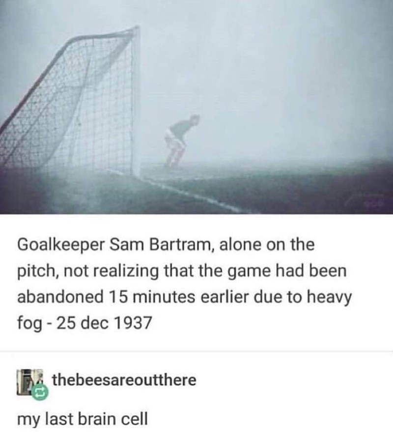 "Pic of a goalie on a foggy soccer field with Tumblr text that reads, ""Goalkeeper Sam Bartram, alone on the pitch, not realizing that the game had been abandoned 15 minutes earlier due to heavy fog - December 25, 1937;"" someone comments below, ""My last brain cell"""