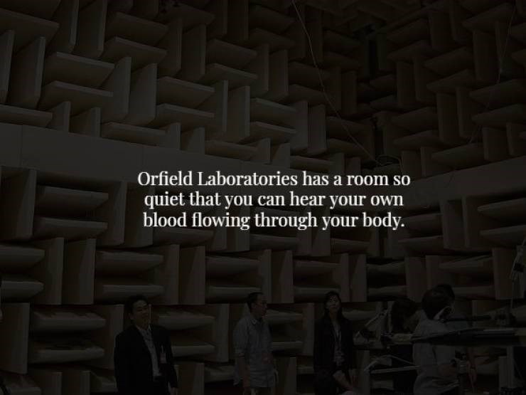 Text - T Orfield Laboratories has a room so quiet that you can hear your own blood flowing through your body.