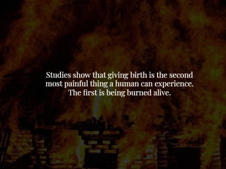 Nature - Studies show that giving birth is the second most painful thing a human can experience. The first is being burned alive.