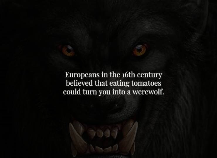 Black - Europeans in the 16th century believed that eating tomatoes could turn you into a werewolf.