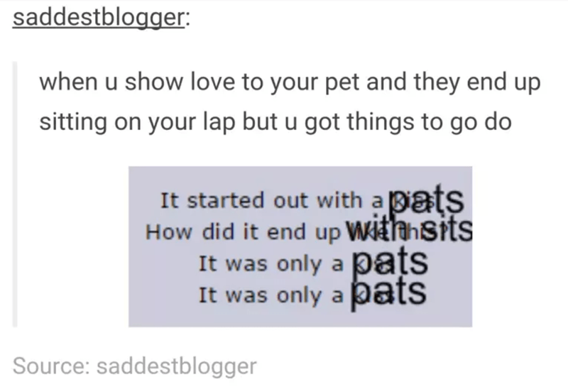 funny tumblr post animals when u show love to your pet and they end up sitting on your lap but u got things to go do It started out with a 3ats How did it end up Withhsits It was only a pats It was only a pats Source: saddestblogger