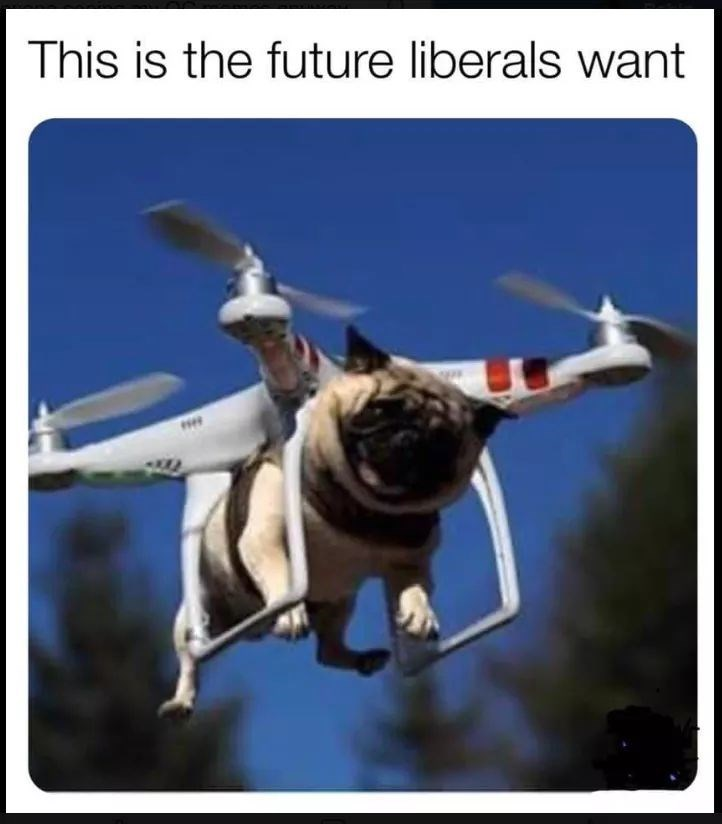 Canidae - This is the future liberals want