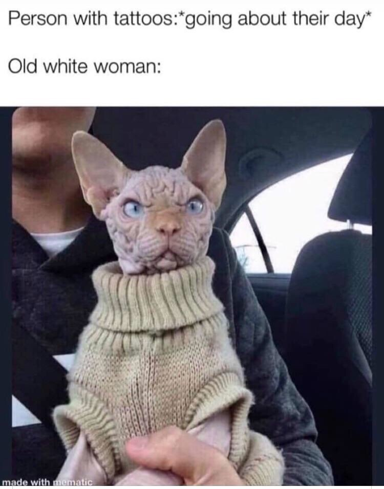 """Caption that reads, """"Person with tattoos: *going about their day;* Old white woman: ..."""" above a pic of an ugly hairless cat looking angry wearing a sweater"""