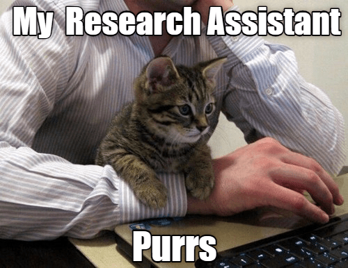 Cat - My Research Assistant Purrs