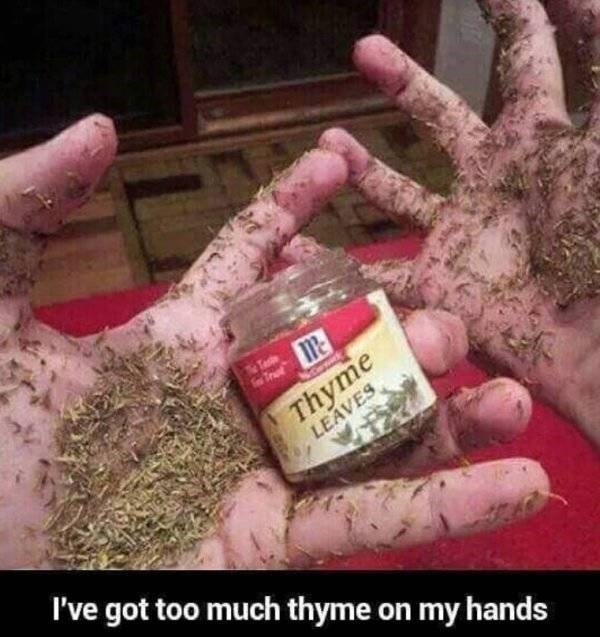 Hand - Te Trat Thyme LEAVES I've got too much thyme on my hands