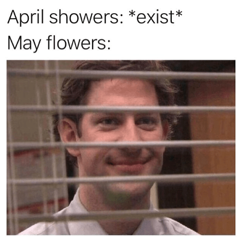 Funny meme about april showers and may flowers, jim halpert, blinds, the office.