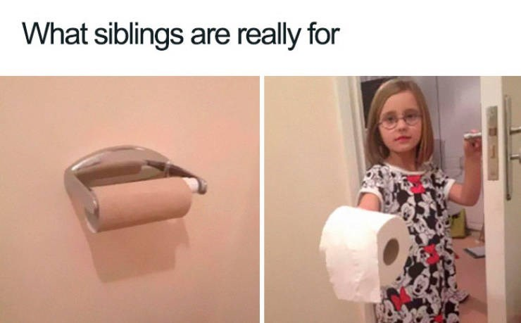 "Meme - ""What siblings are really for"""