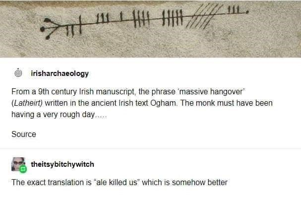 """Text - 111 irisharchaeology From a 9th century Irish manuscript, the phrase 'massive hangover"""" (Latheirt) written in the ancient irish text Ogham. The monk must have been having a very rough day.. Source theitsybitchywitch The exact translation is """"ale killed us"""" which is somehow better"""