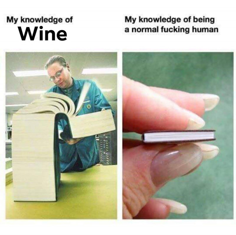 Product - My knowledge of being a normal fucking human My knowledge of Wine