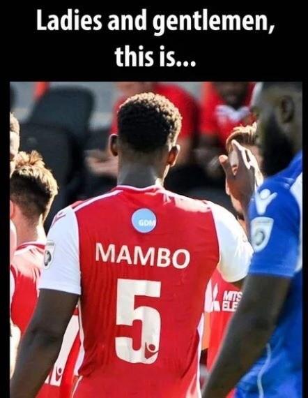 music meme - Player - Ladies and gentlemen, this is... GDM MAMBO MITS ELE 53