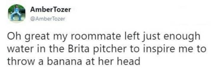 Text - AmberTozer @AmberTozer Oh great my roommate left just enough water in the Brita pitcher to inspire me to throw a banana at her head