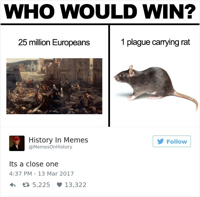 Rat - WHO WOULD WIN? 25 million Europeans 1 plague carrying rat History In Memes Follow MemesOnHistory Its a close one 4:37 PM 13 Mar 2017 t5,225 13,322
