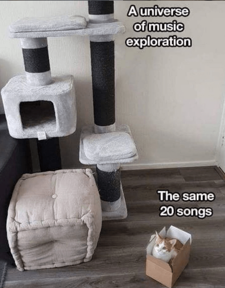 Cat - Product - Auniverse of music exploration The same 20 songs